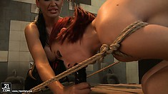 Mandy's is glad to have her dependent girl Lucy back for punishment
