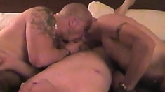 These studs make each other moan with their hard cocks in bed