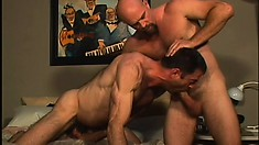 Brutal gay cop gets his would be suspect to chew his rod and open his ass