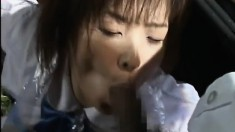Japanese sluts show off their bodies and get hot jizz on their faces