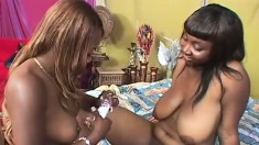 Chubby black lesbians eat out each other's peaches and share a sex toy