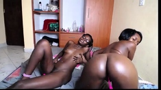 Sexy black lesbian licking and toying