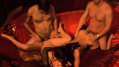 Petite swinger babe is getting oral sex